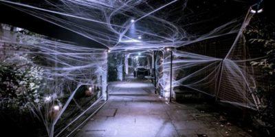 Beton Halloween